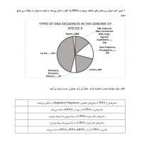 سوالات-کمپبل-به-سبک-مرحله-2.pdf