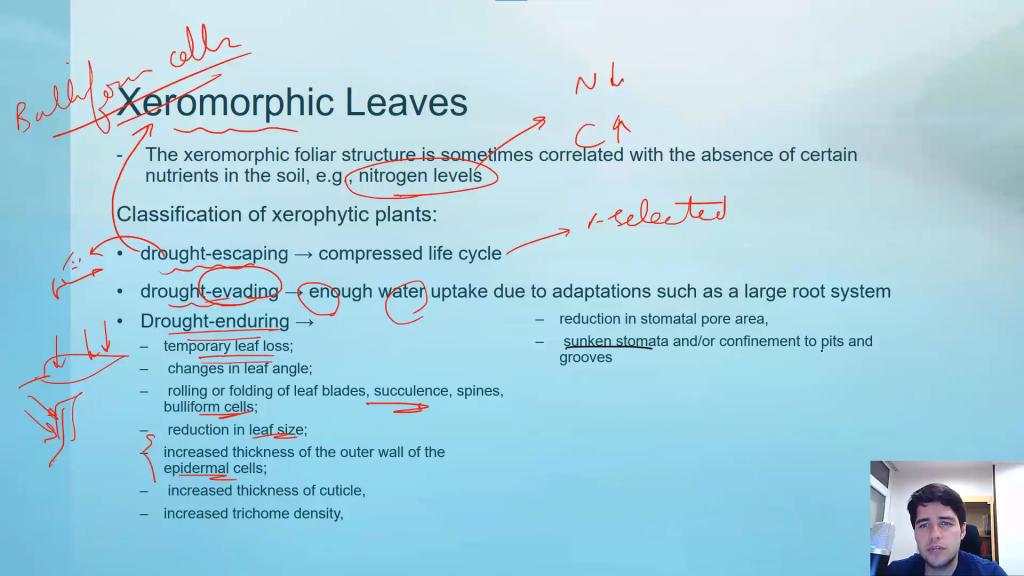 تصویری از دوره سیستماتیک گیاهی المپیادلب (1)
