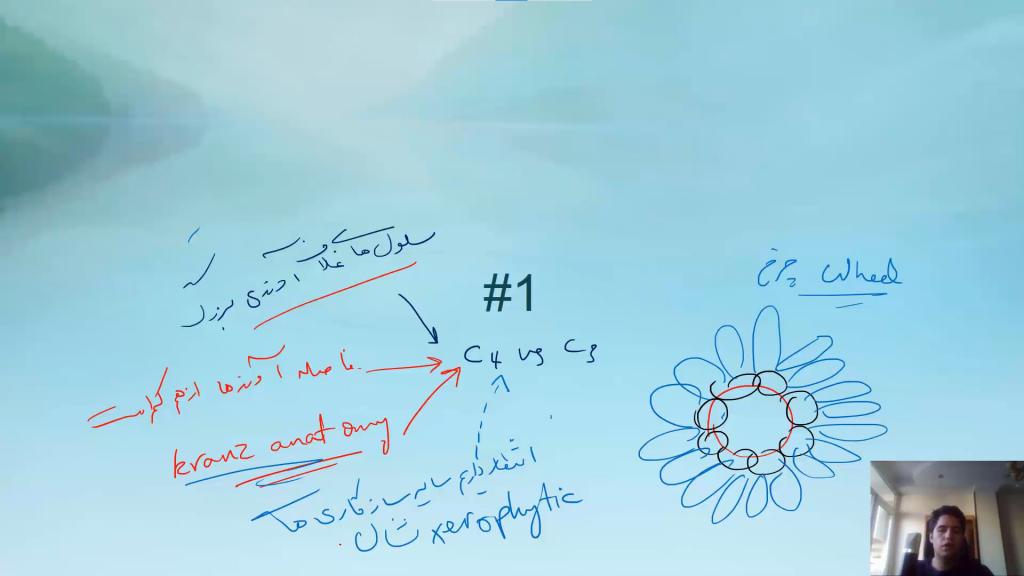 تصویری از دوره سیستماتیک گیاهی المپیادلب (3)